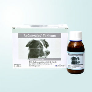 Catopharm ReConvales Tonicum Dog 6x90 ml